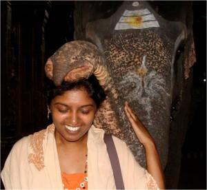 christelle elephant